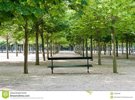 paris park bench bench in luxembourg gardens royalty free stock image
