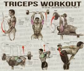 tricep workouts at home the best triceps exercises for mass all bodybuilding