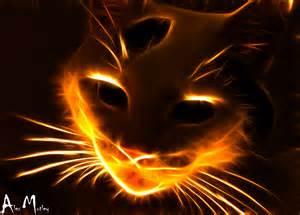 Fire Cat | Alex Mutley | Flickr Kitten