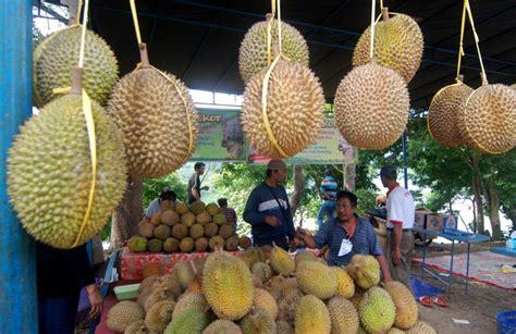 dulu defisit ekspor durian surplus  ton selama