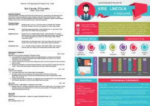 samples infographic resume
