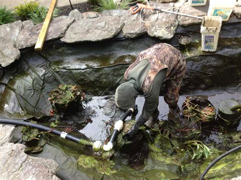 how to clean a backyard pond pond maintenance pond cleaning service baltimore