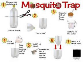 where do mosquitoes hide in your room get rid of mosquitos at your home with this simple