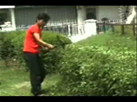 Mesin Potong Rumput Dorong mesin alat potong rumput dan pangkas tanaman pagar