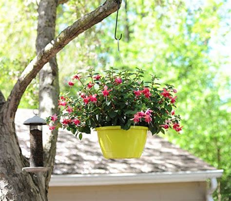 diy hanging planter make some hanging planters with a