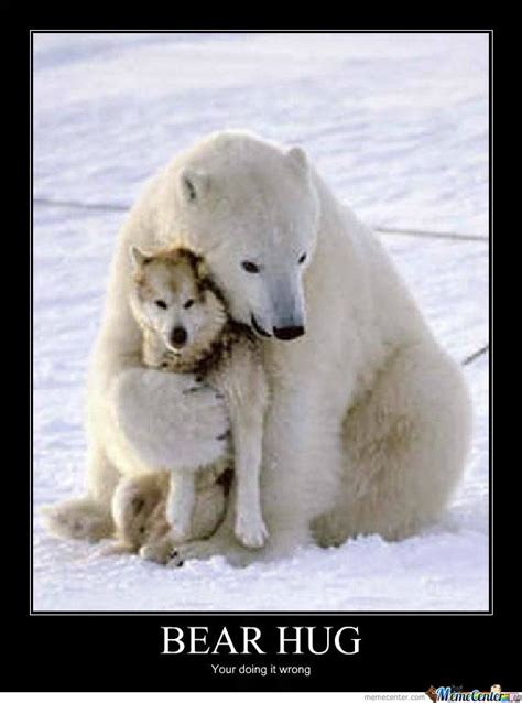 Meme Hug - pin by lori killion on hugs pinterest cute hug memes