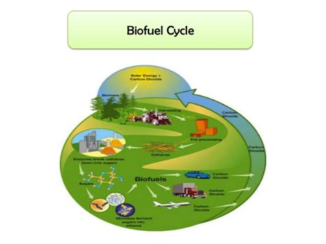 biofuel adalah power point biofuel