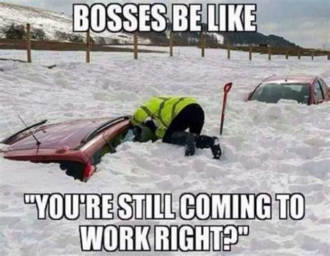 Bosses Be Like Meme - perfectly reasonable reactions to the start of snow 28
