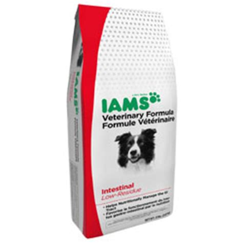 food for pancreatitis canine pancreatitis diet