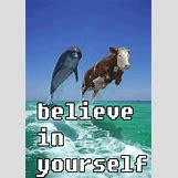 Quotes About Confidence In Yourself   428 x 610 jpeg 198kB