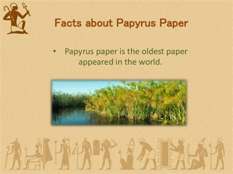 History Of Paper - history of papyrus paper
