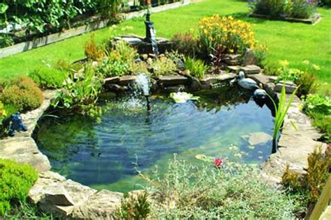 how to build a small pond in your backyard image gallery small pond