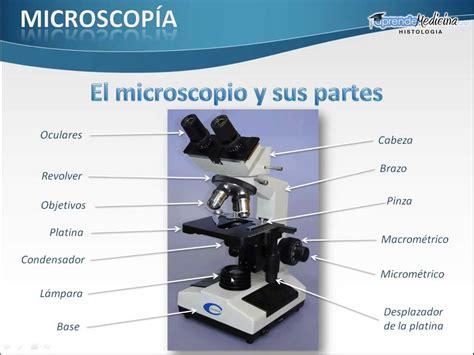 imagenes del lapiz optico de la computadora el microscopio y sus partes youtube
