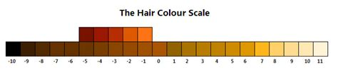 hair color scale the hair colour scale by karty on deviantart