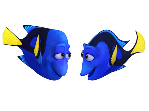 finding dory finding dory images reveal all new animated animals collider