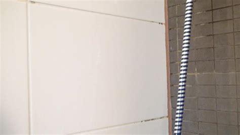 bester badezimmerventilator gro 223 draht badezimmer ventilator ideen der schaltplan