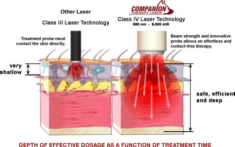 cold laser therapy for dogs all pets animal hospital and rehabilitation center veterinary laser therapy for dogs