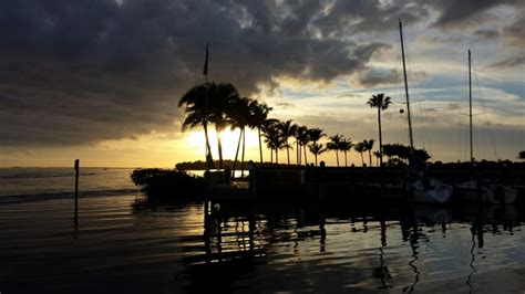 cape coral boat tours cape coral sunset dolphin cruise banana bay boat tours