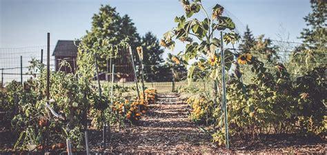 community gardens city of cuyahoga falls - Garden Cuyahoga Falls