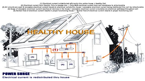 stunning electrical house gallery electrical circuit