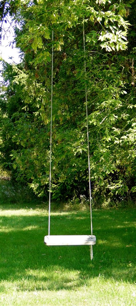 backyard tree swing 17 best images about tree swing garden on pinterest