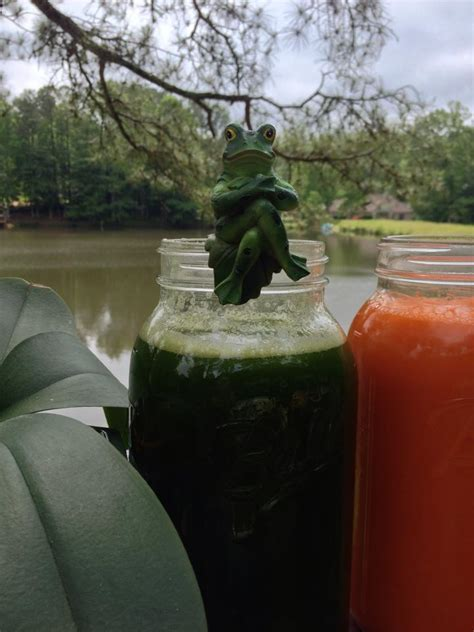 Two Week Detox Retreat by Two Week Fall Detox Juice Fasting Renewal Retreat