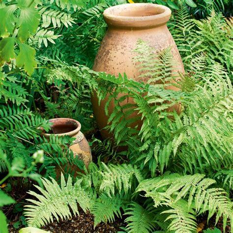 cottage garden pots garden with teracotta pots country cottage garden tour