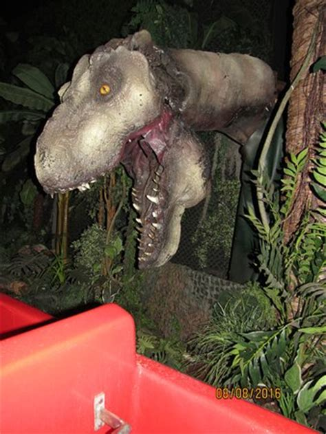 jurassic jungle boat ride in pigeon forge tennessee decoy uno picture of jurassic jungle boat ride pigeon