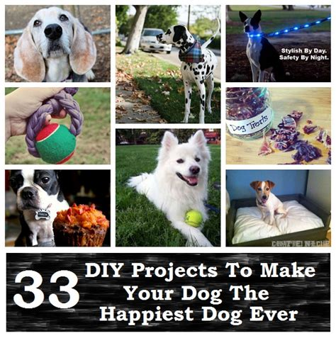 diy crafts for dogs 33 diy projects to make your the happiest