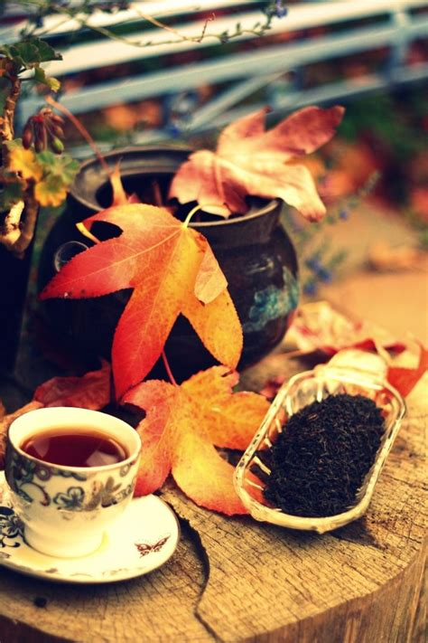coffee autumn wallpaper 1861 best images about my cup of tea on pinterest