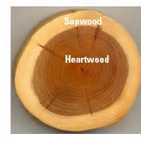 define wood heartwood d 233 finition what is