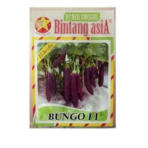 jual benih terong bungo f1 5 gram bintang asia bibit