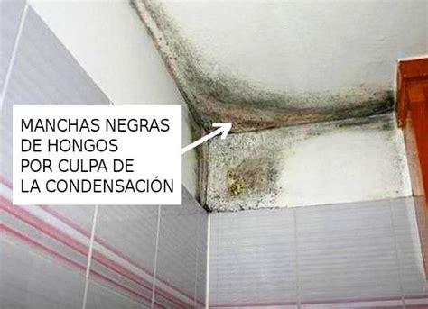 humedad en casa soluciones humedad condensacion soluciones