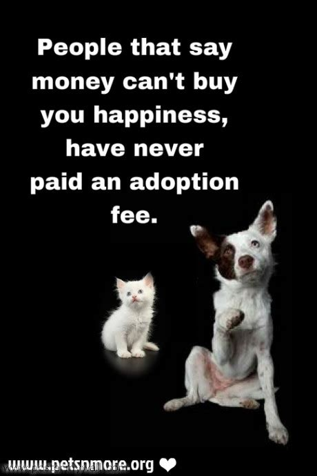 rescue quotes rescue quotes and sayings