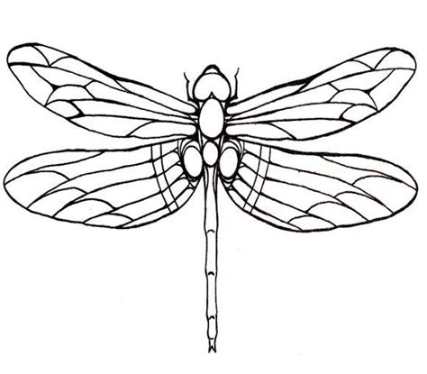 dragonfly coloring page dragonfly line drawings uk google search mosaic