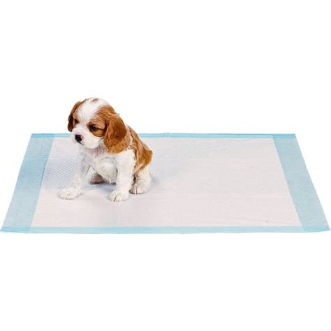 how to dogs to on pads buy rspca puppy pads 35 pack at argos co uk your shop for