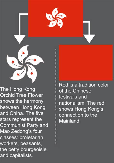 layout man meaning meaning of the flag of hong kong vexillology