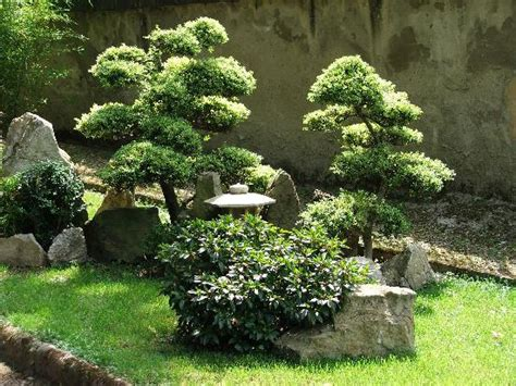 tiny gardens a tiny japanese garden in florence picture of botanical