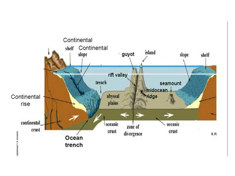 Continental Shelf Slope Rise by Technology The Floor Ppt
