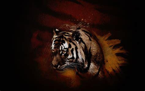wallpaper hd black tiger black tiger wallpaper wallpapersafari
