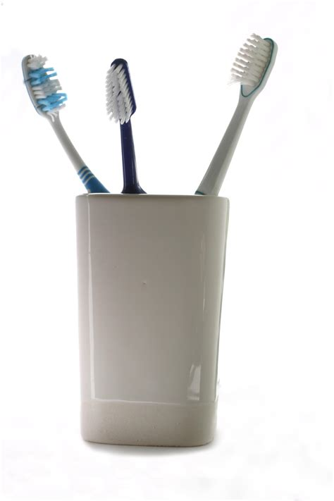 Tooth Brush Rack Cup Holder Tempat Sikat Gigi Rak S Berkualitas file toothbrush 20060209 jpg wikimedia commons