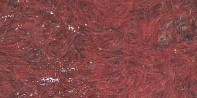 Fermentasi Cacing cara usaha budidaya cacing gang banget budidaya