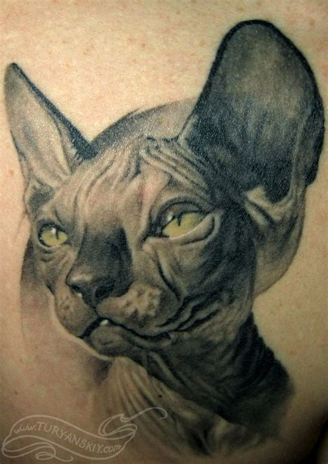 tattoo bald cat skinny hairless cat by oleg turyanskiy tattoonow
