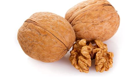 the best nuts tip the best nuts for your nuts t nation