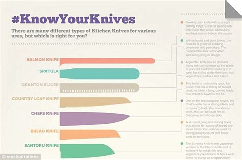 most important kitchen knives types of kitchen knives pixshark com images