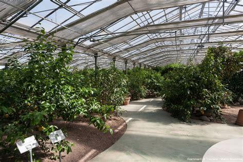 giardino degli agrumi i colori ed i profumi giardino degli agrumi