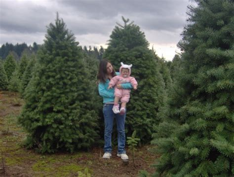 estacada oregon christmas tree capital of the world