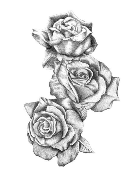 tattoo rose sketch 1000 ideas about tattoos on