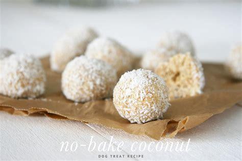 coconut treats no bake coconut treats pretty fluffy pretty fluffy