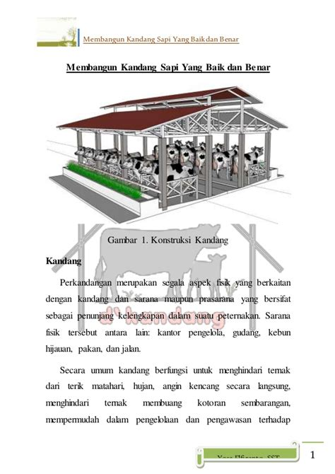 Harga Bibit Lele Sangkuriang Di Bandung ternak sapi bandung ternak sapi